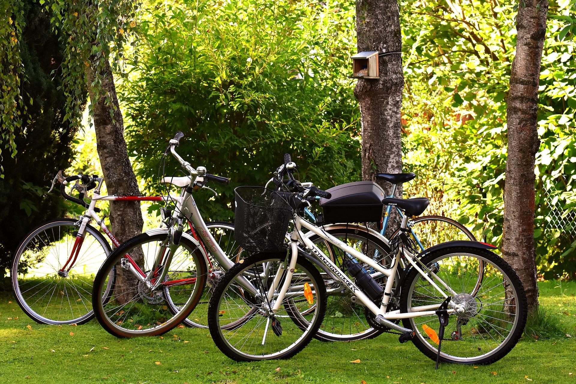 全労済 自転車保険