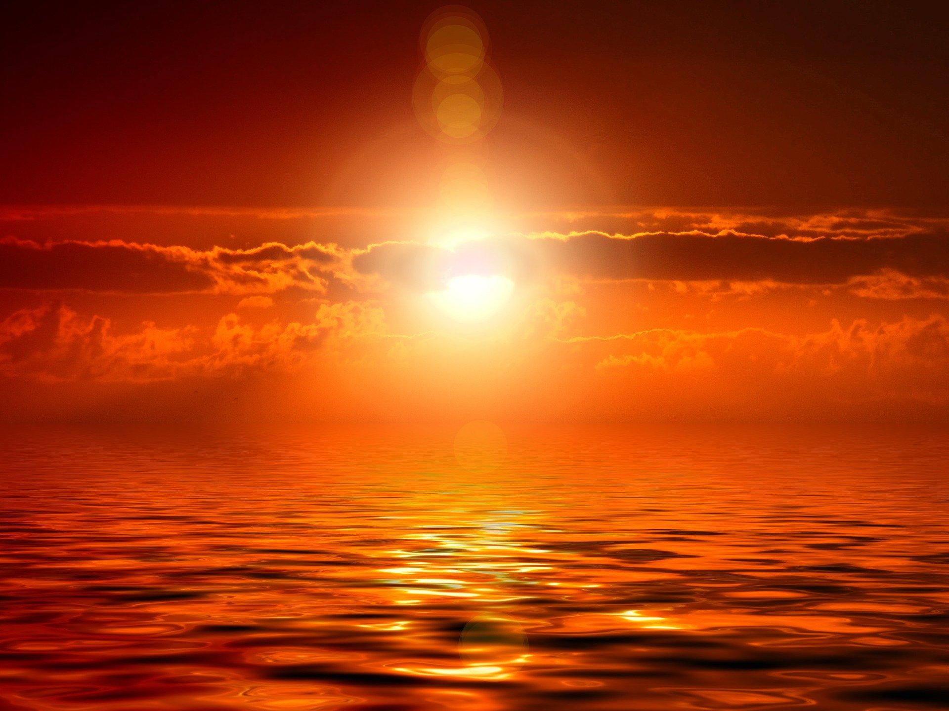 太陽生命 就業不能