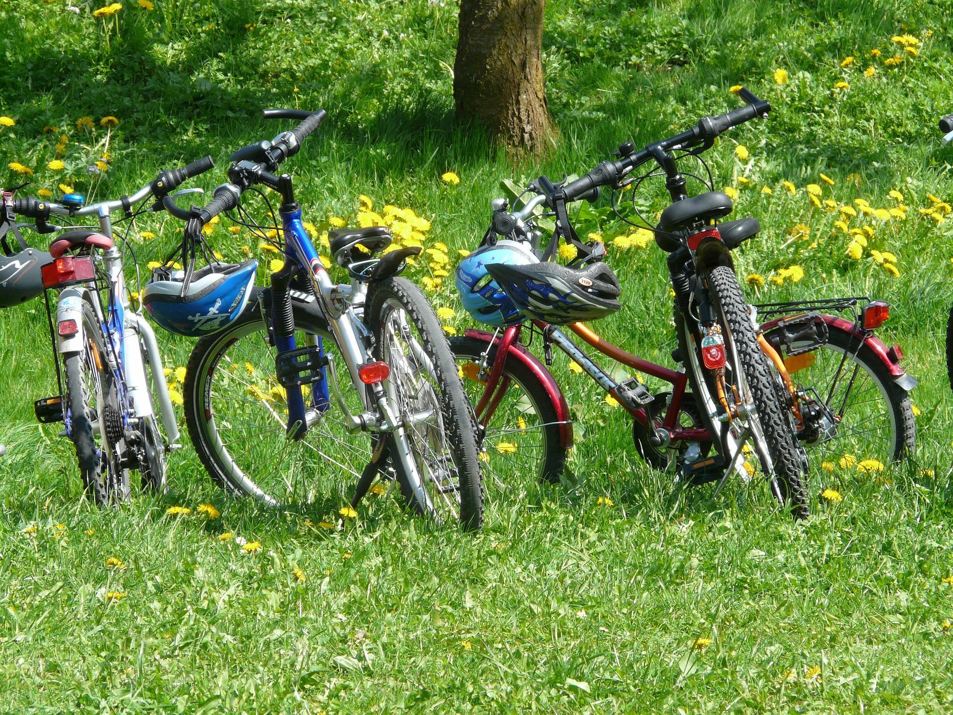 県民共済 自転車保険