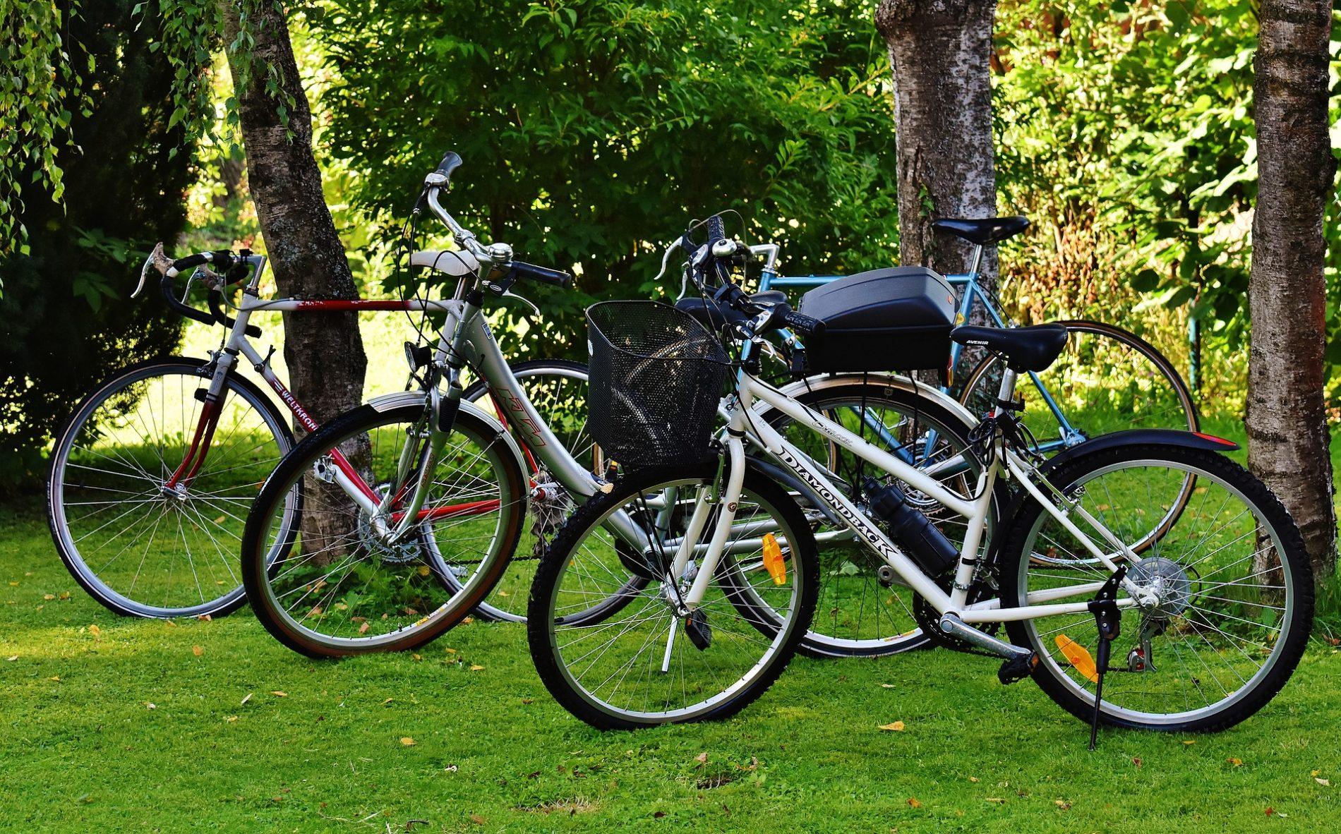 自転車保険の家族型とは